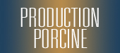 Production porcine